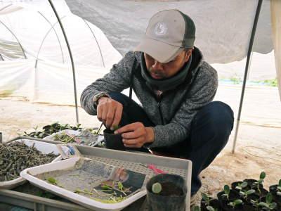 水源キウイ 2020年年も元気に開花しました!今年も完全無農薬・無化学肥料で育てます!!_a0254656_20235841.jpg