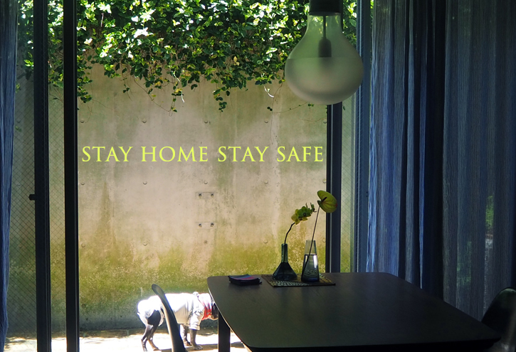 stay home stay safe_e0243765_10355451.jpg