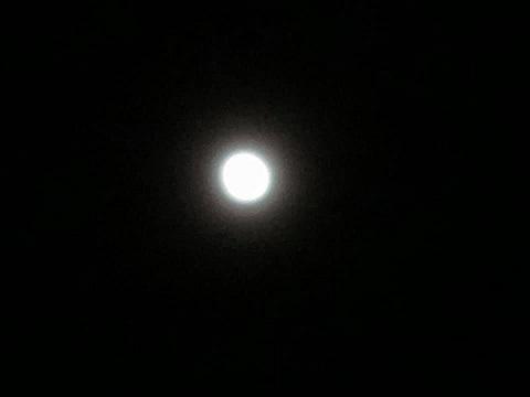 満月だね~_e0040673_18034660.jpg