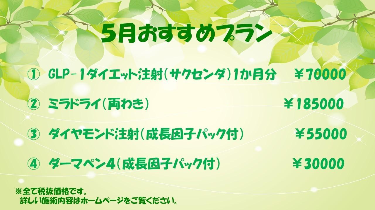 5月おすすめプラン_d0151279_11293869.jpg