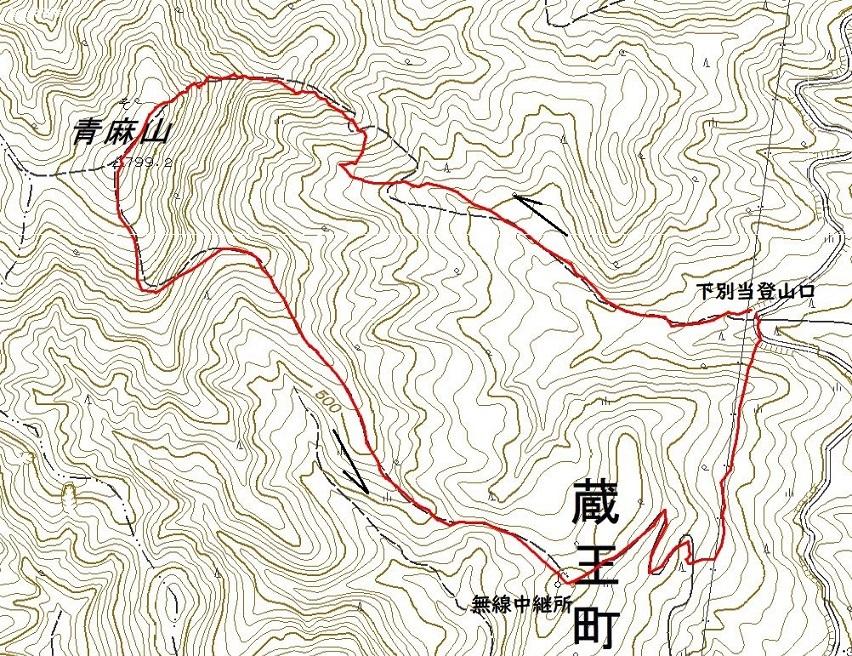 青麻山(39回目)~ 2020年5月2日_f0170180_00410198.jpg