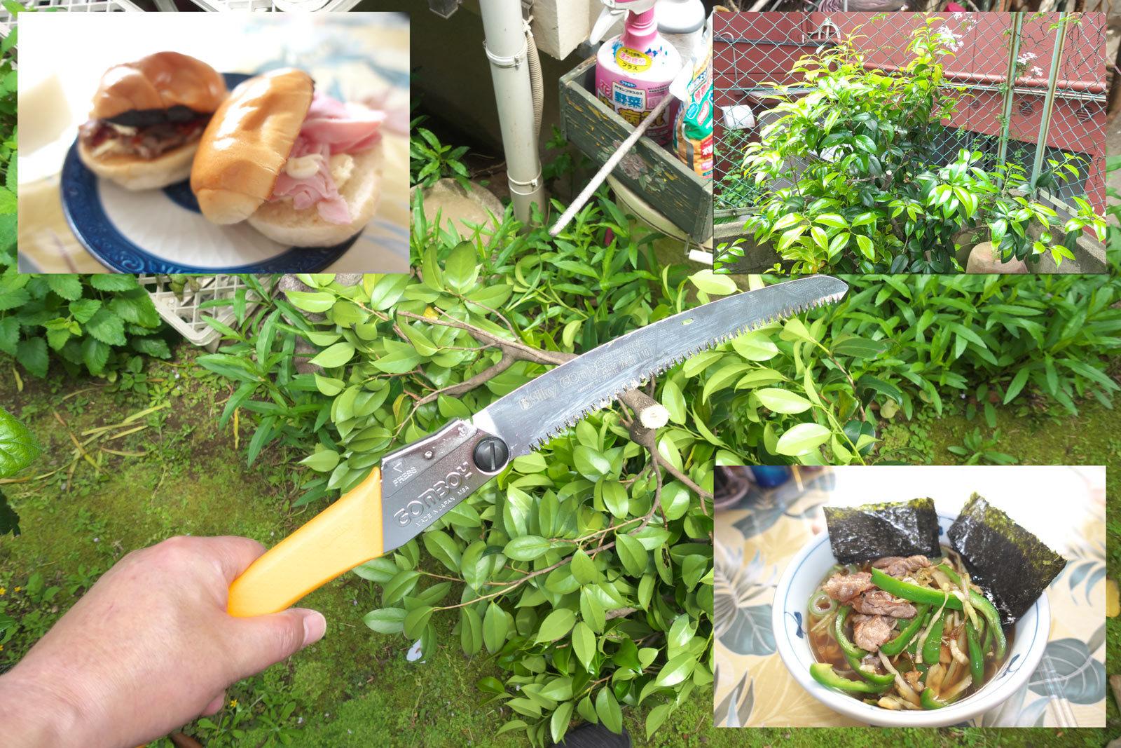 こどもの日は庭の手入れ_a0271402_11004855.jpg