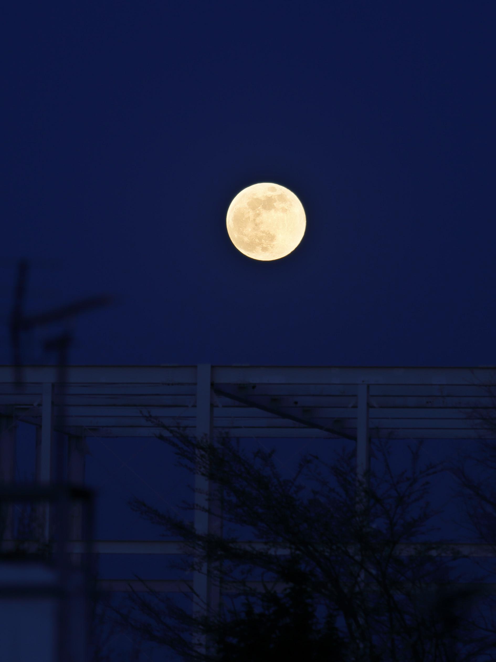満月の夜_b0283211_09595102.jpg