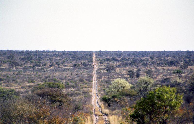 アフリカの記憶 003_d0010432_21325592.jpg