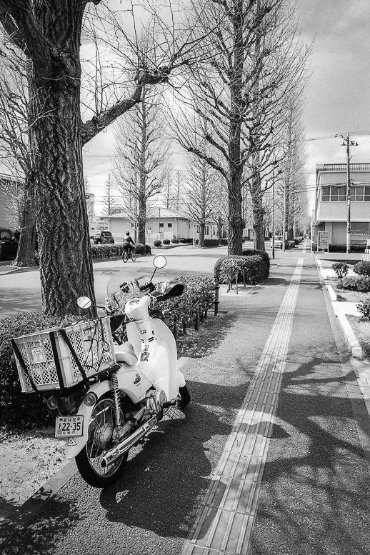 街路樹の影に立ち止まるスーパーカブ_f0265234_22101140.jpg