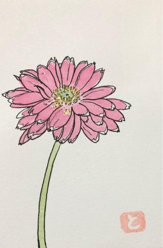 ガーベラの花言葉は「希望」_f0027667_10592998.jpg