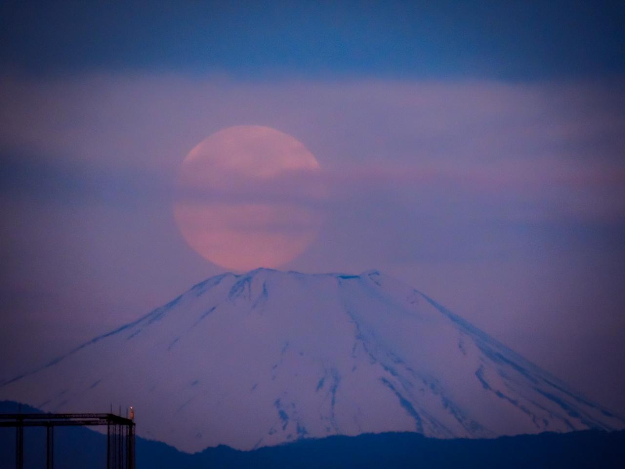 2020.5.8薄雲越しのパール富士(調布市五本松公園)_e0321032_10325995.jpg