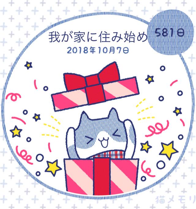 手ぬぐいのマスクカバー☆_f0183846_18194916.jpg