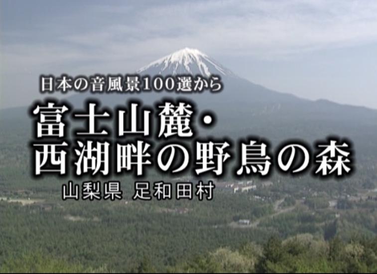 Stay Homeの皆様へ、癒しのひと時を、音のある風景へ!日本の音風景100選から静岡・山梨_b0115553_23143544.png
