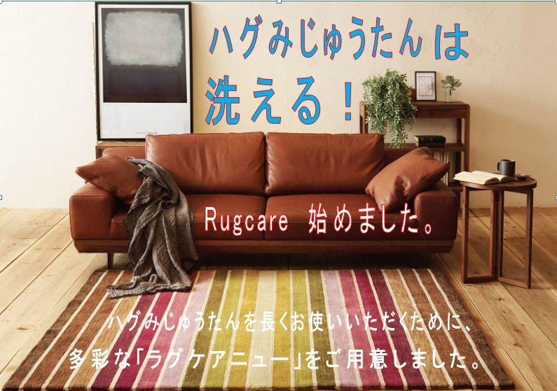 ハグみじゅうたんの「ラグケア」_f0176387_09321121.jpg
