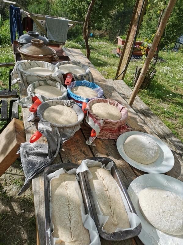 パンを焼きました_f0106597_07113542.jpg