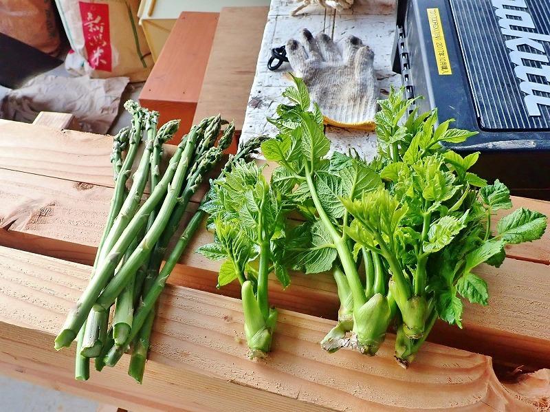 兼業農家は家庭菜園のマルチ掛け作業_c0336902_17422344.jpg
