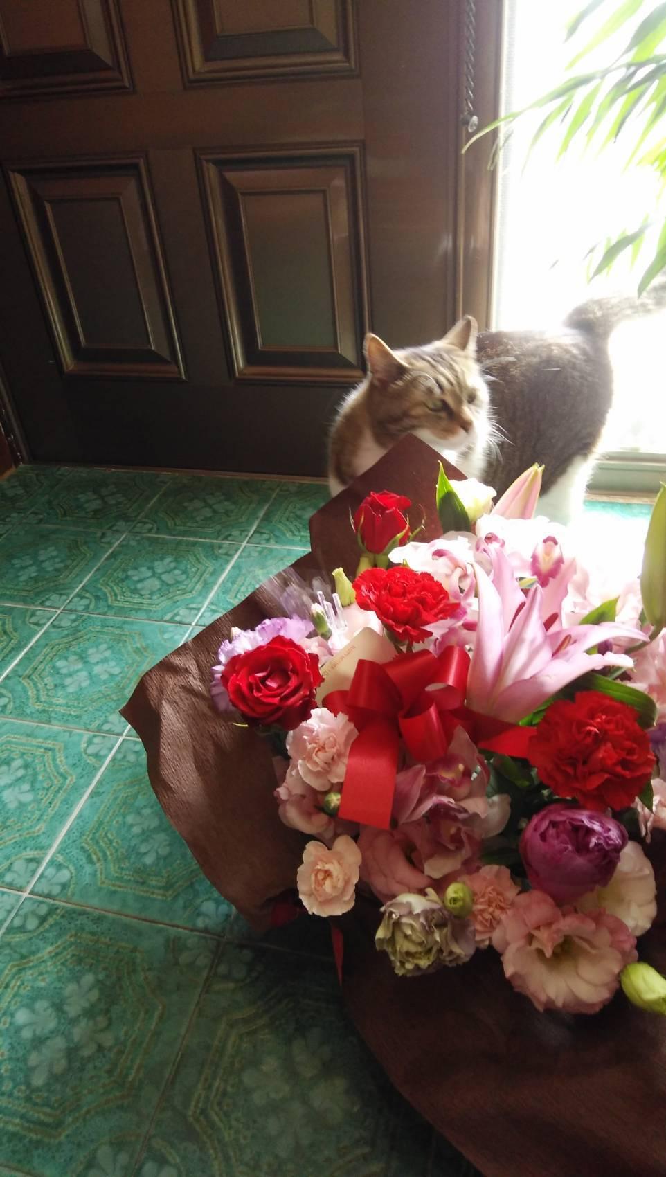 母の日に感謝の気持ちを伝える_b0334704_11282868.jpg