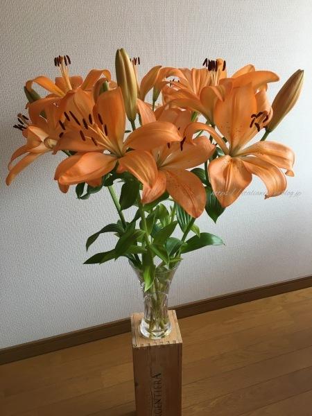 オレンジのユリで母の日を祝う_d0219019_21540060.jpg