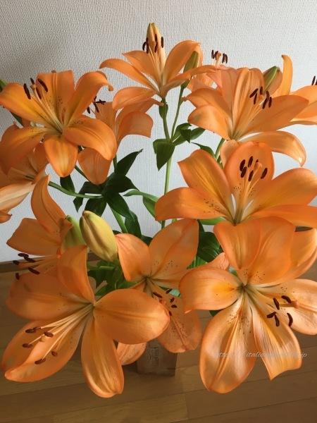 オレンジのユリで母の日を祝う_d0219019_21545163.jpg