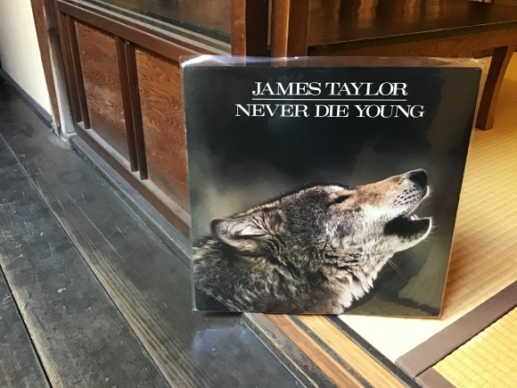 NEVER DIE YOUNG / JAMES TAYLOR_e0230141_21140642.jpeg