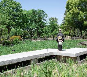 鶴舞公園の華_c0021551_19550911.jpg