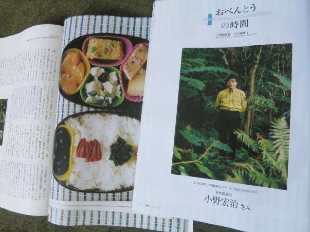 翼の王国5月号の「お弁当の時間」は、やんばるの森から_c0402074_13164778.jpg