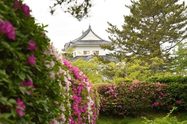 上野城です!_f0368083_15022770.jpg