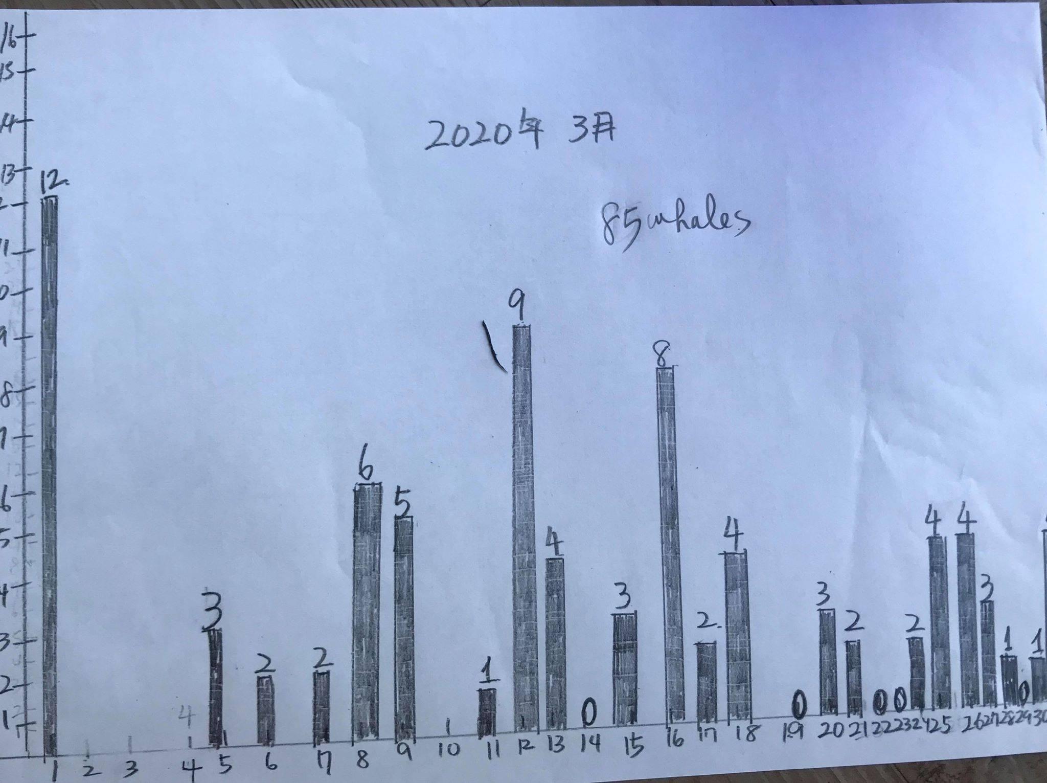 2020年鯨レポート 屋久島  ザトウクジラ_b0160957_17181847.jpg