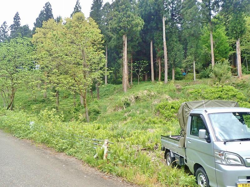兼業農家は山へ柴刈りに行きました!_c0336902_20331670.jpg