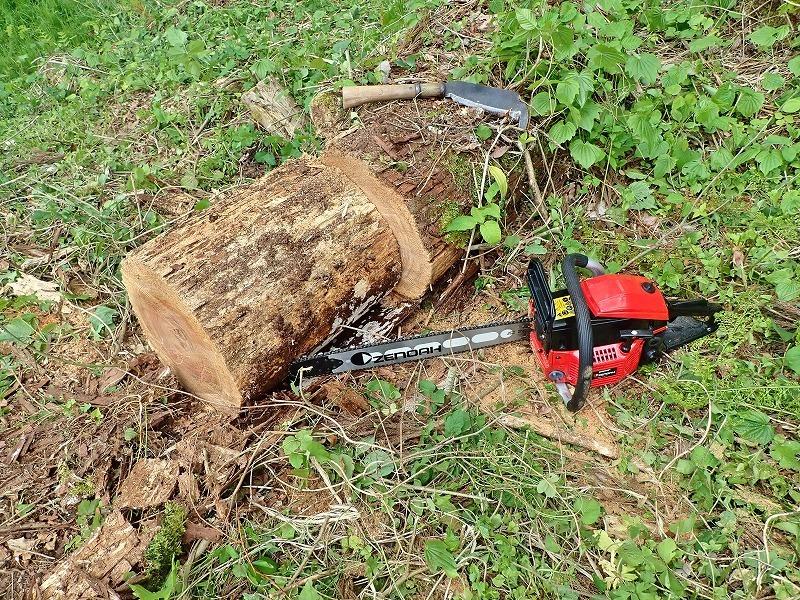 兼業農家は山へ柴刈りに行きました!_c0336902_20333319.jpg