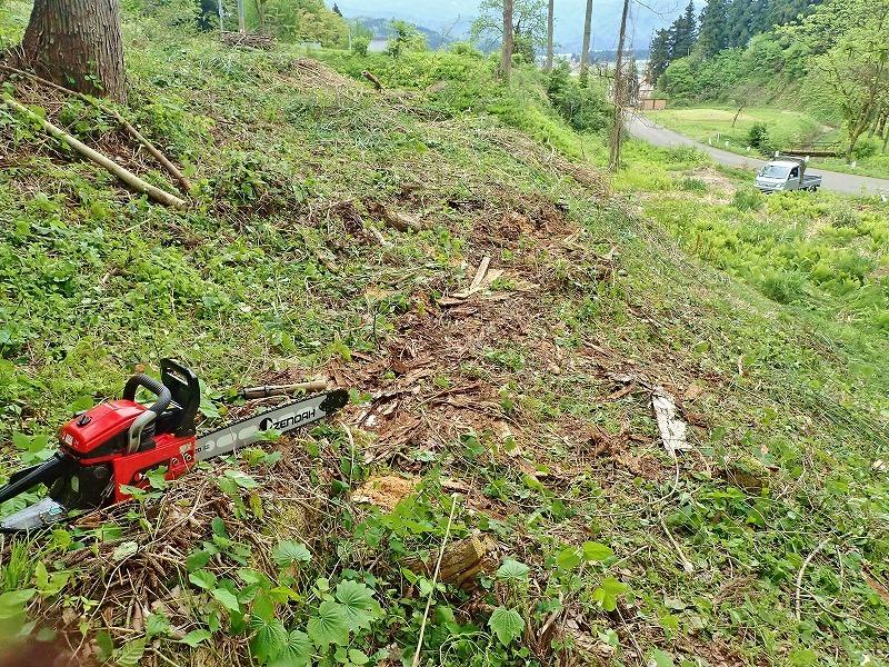 兼業農家は山へ柴刈りに行きました!_c0336902_20333873.jpg