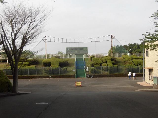 刈り取り間近の茶畑を行く  こどもの日に歩いた朝の散歩「総合運動公園コース」_f0141310_07385773.jpg