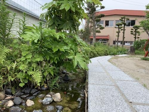幼稚園のお庭_c0107515_10044540.jpeg