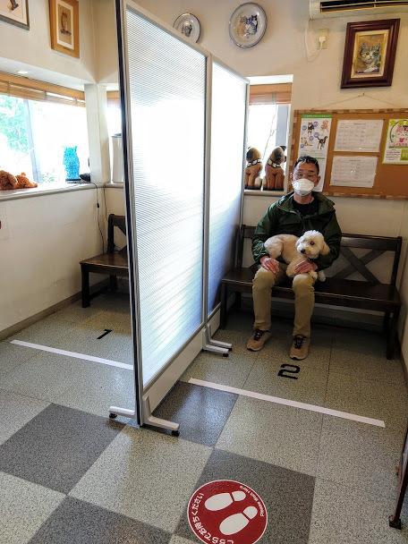 新型コロナウィルスに対するセラピー動物病院の取り組み_b0020618_23422102.jpg