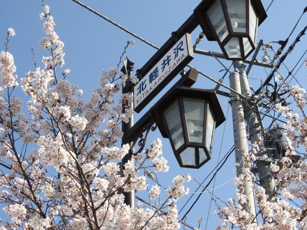 【おしらせ】5月15日(金)より営業再開、テントサイトについて(2020年5月13日)_b0174425_16220310.jpg