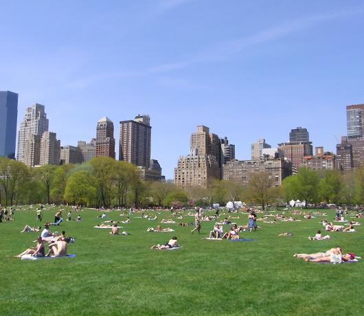 初夏のニューヨーク風景、過去ログでバーチャルお散歩_b0007805_22272253.jpg