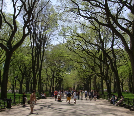初夏のニューヨーク風景、過去ログでバーチャルお散歩_b0007805_22351010.jpg