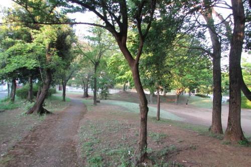 夕方の散歩_a0333211_22095951.jpg