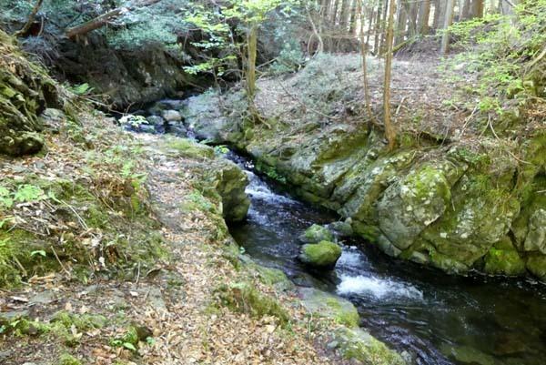 新緑の北山 百井から大見へ_e0048413_22070768.jpg