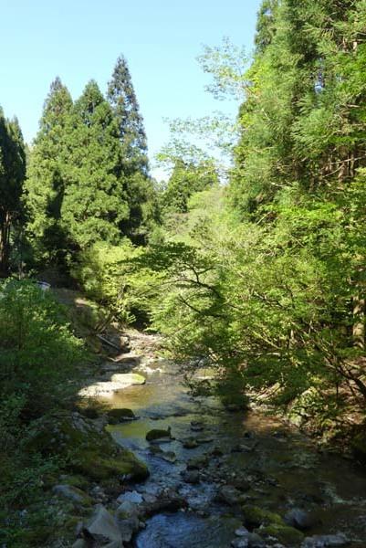 新緑の北山 百井から大見へ_e0048413_22075722.jpg