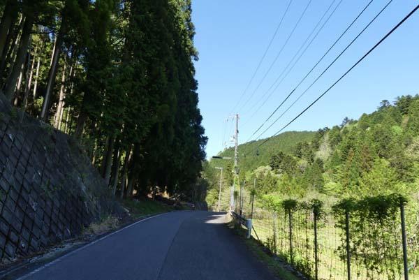 新緑の北山 百井から大見へ_e0048413_22081194.jpg
