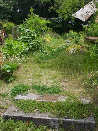 5月の庭より_a0335560_09395415.jpg