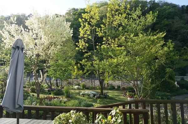 庭仕事の服_e0365880_21050935.jpg