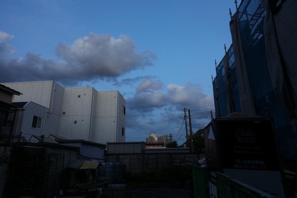 青い_c0252695_09490581.jpg