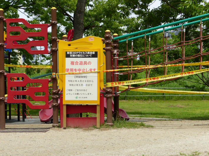 岩槻城址公園の睡蓮 2020_f0296312_16411366.jpg