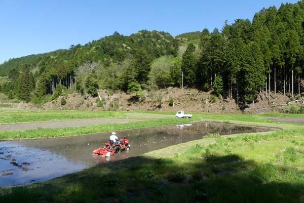 緑の北山 百井集落から百井別れへ_e0048413_20014302.jpg