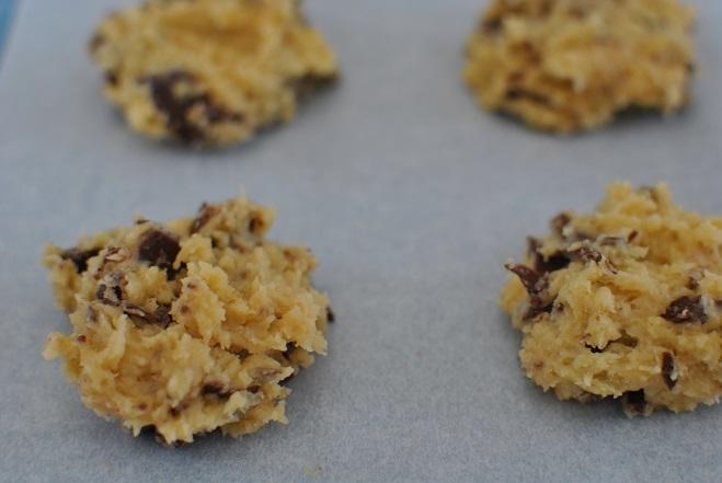 チョコチップクッキーを焼く_b0129725_11525232.jpg