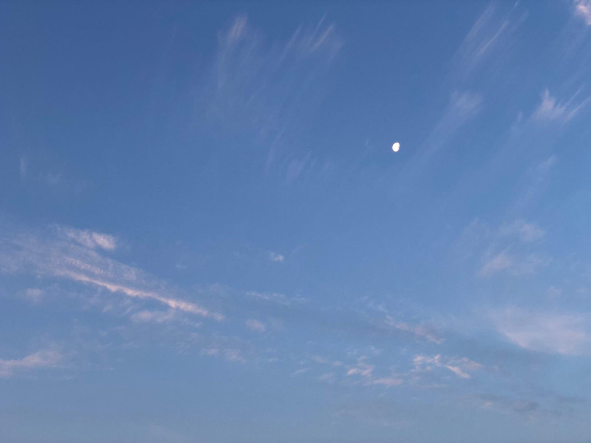 ■朝空 2020.05.12_b0023047_01583019.jpg