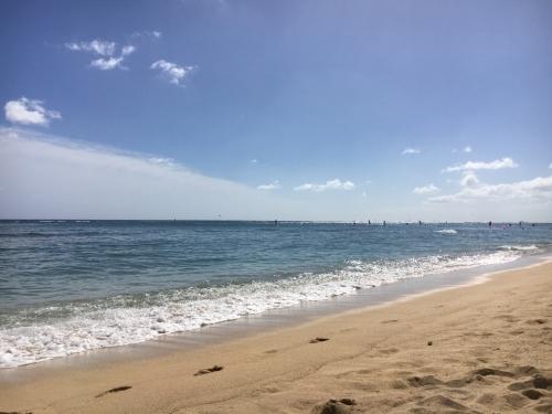 ハワイの旅\'18~ 「マノアの滝」トレイル_e0326953_23052258.jpg