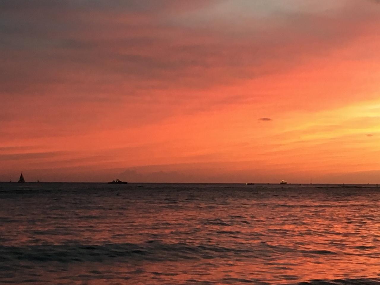 ハワイの旅\'18~ 「マノアの滝」トレイル_e0326953_23151418.jpg