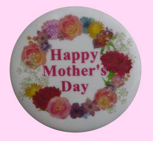 今日は母の日_e0108263_13453333.jpg