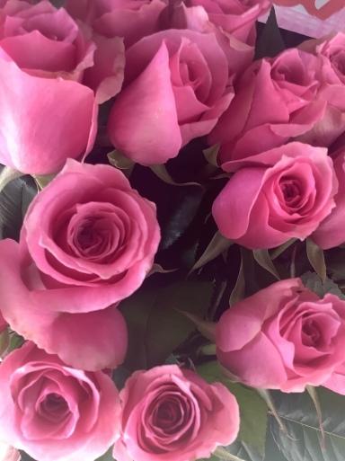 花にも一番似合う色がある_b0210699_01554794.jpeg