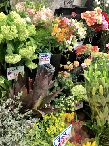 花にも一番似合う色がある_b0210699_02213237.jpeg