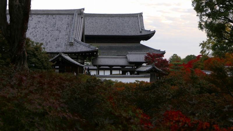 国内出張2019年11月-第一日目ー東福寺_c0153302_18315681.jpg